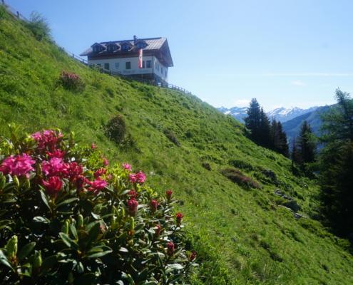 Apart Pitztal Ferienwohnungen Sommerurlaub Tirol